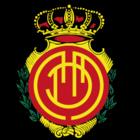 Budimir's club