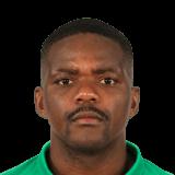 William Silva de Carvalho fifa 19